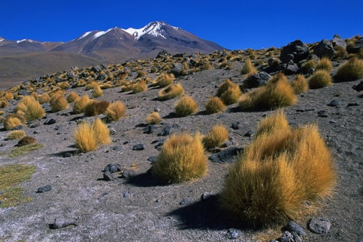 Stock Photo: 1566-0181548 Andes Mountains. Bolivia