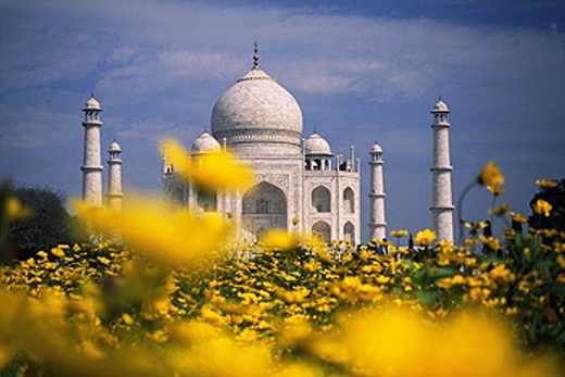 Taj Mahal. Agra. India : Stock Photo