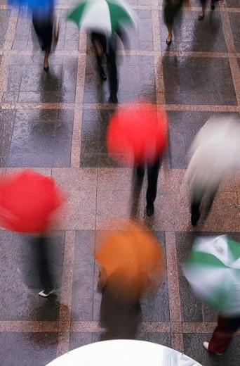 Stock Photo: 1566-018359 Rainy day