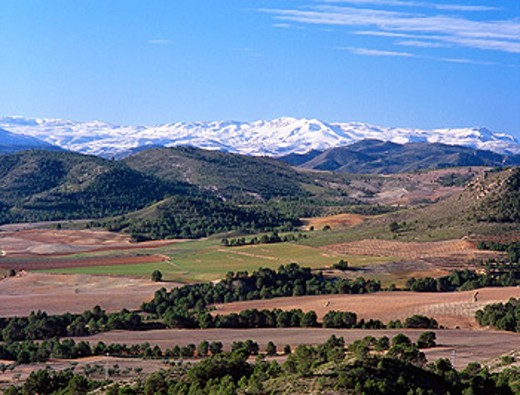 Stock Photo: 1566-0185042 Calar del Mundo and Calar de la Sima, Sierra de Segura. Albacete province. Spain