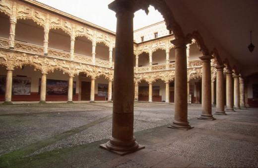 Court of the Lions at Palacio del Infantado built 15th century. Guadalajara. Spain : Stock Photo