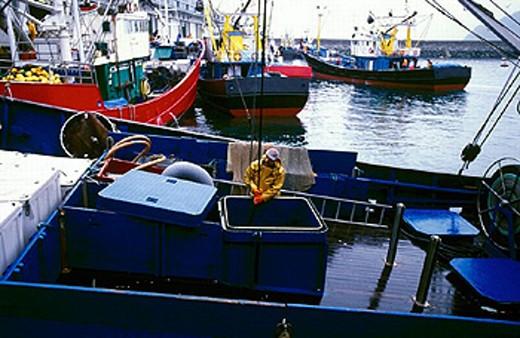 Fishermen at port. Getaria. Guipúzcoa. Spain : Stock Photo