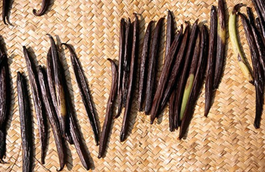 Vanilla curing on mats. Papantla. Veracruz. Mexico : Stock Photo