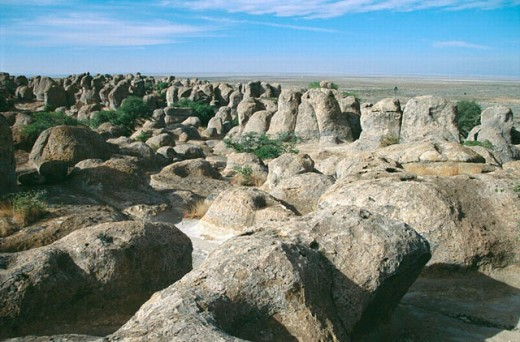 Stock Photo: 1566-0191949 City of Rocks State Park. New Mexico. USA
