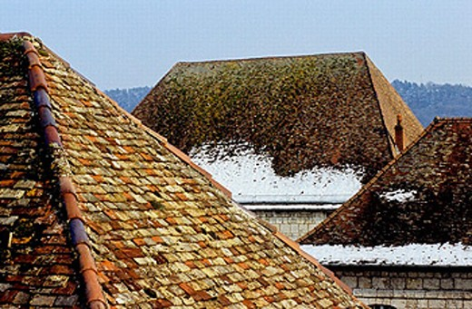 The Citadel. City of Besançon. Doubs, Franche-Comté, France. : Stock Photo