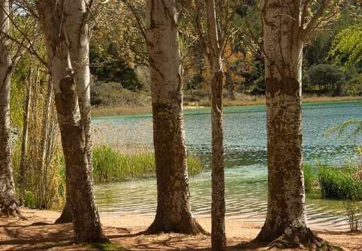 Lagunas de Ruidera Natural Park. Albacete and Ciudad Real provinces, Spain : Stock Photo