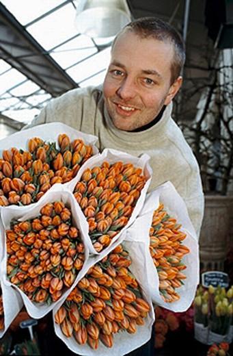 Tulips. Flower market. Amsterdam. Netherlands. : Stock Photo
