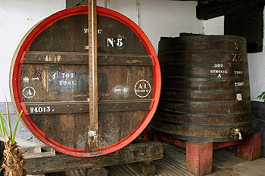 Stock Photo: 1566-0220519 Wine casks. Winery. The old Blandy wine lodge. Funchal. Madeira. Portugal.