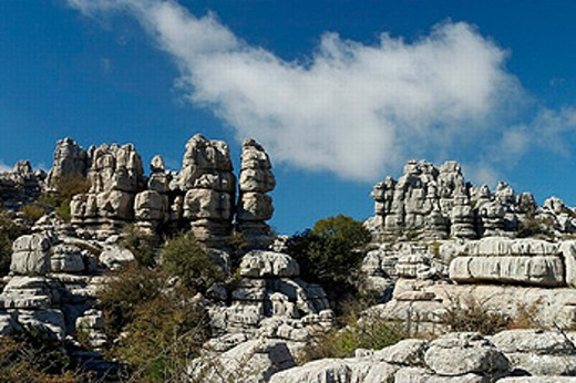 Stock Photo: 1566-0221217 Erosion working on Jurassic limestones. This is the biggest Karstic landscape in Europe. The origin is the sea floor dating from 150 million years ago. Natural park of Torcal de Antequera. Antequera. Málaga province. Andalucia. Spain