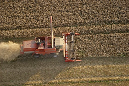 Combine harvester on the field. Skane. Sweden : Stock Photo