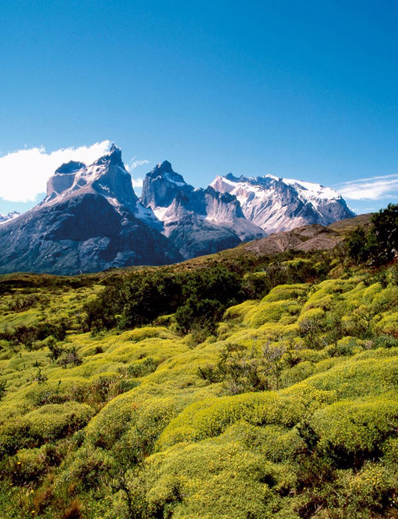 Stock Photo: 1566-0224348 Cuernos del Paine, Torres del Paine National Park. Patagonia, Chile
