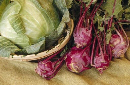 Cabbage. : Stock Photo