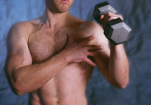 Muscles : Stock Photo