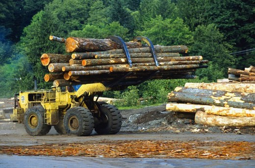 Stock Photo: 1566-0234822 Washington State logging industry: moving the logs around in preparation for cutting. USA