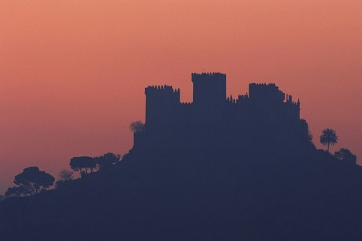 Castle. Almodóvar del Río. Córdoba province. Spain : Stock Photo