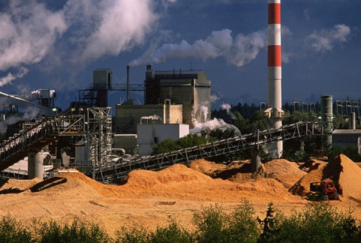 Pulp and paper mill : Stock Photo