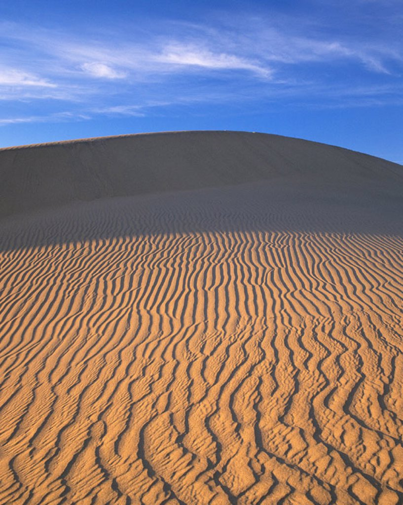 Stock Photo: 1566-030265 Death Valley National Park. California. USA