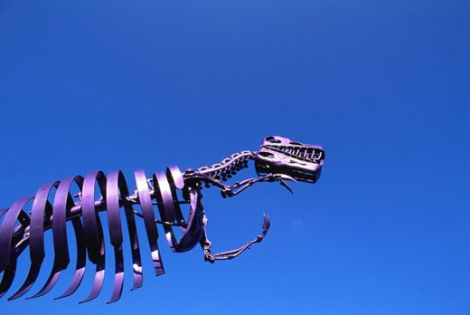 T-Rex : Stock Photo