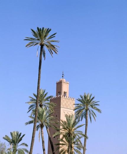 Stock Photo: 1566-042497 Mosque Tower. Marrakech. Morocco