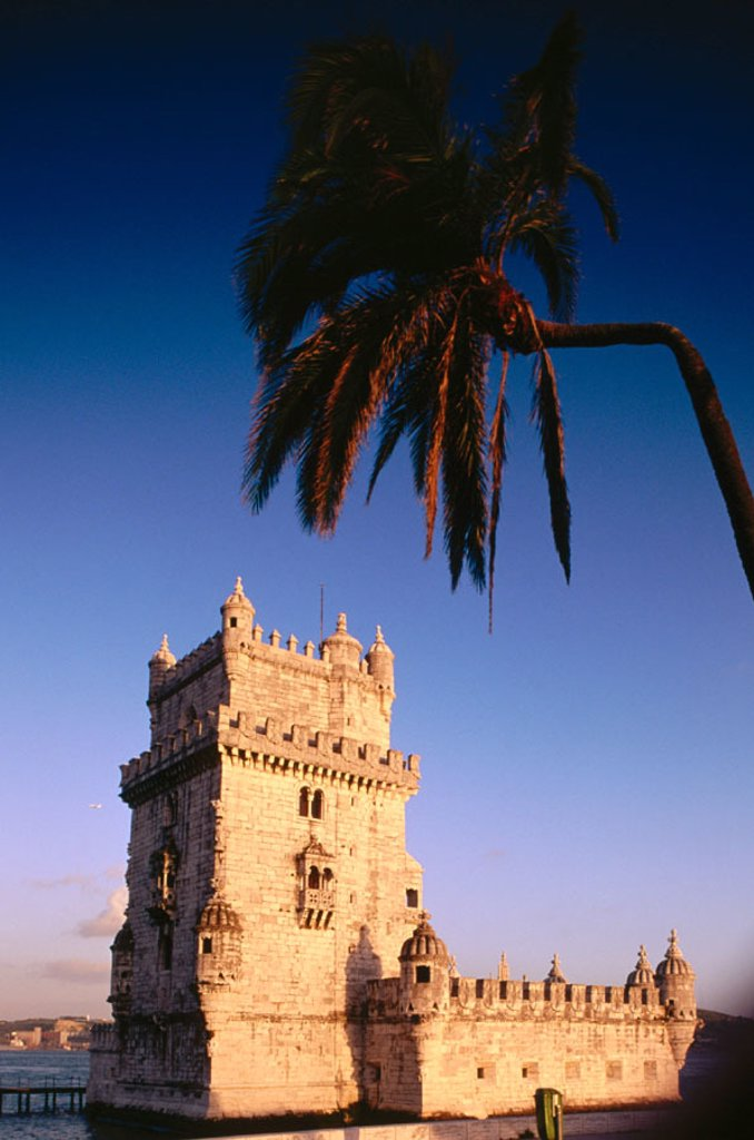 Belem Tower and palm at dusk. Lisbon. Portugal : Stock Photo