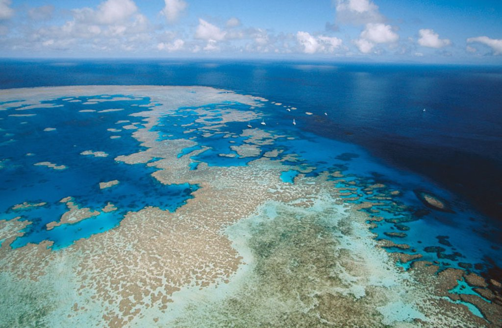 Great Barrier Reef. Australia : Stock Photo