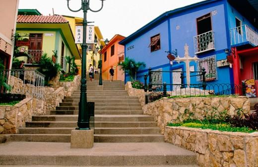Houses. Cerro Santa Ana. Guayaquil. Guayas province. Ecuador : Stock Photo