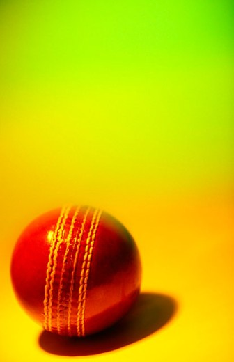 Cricket ball : Stock Photo