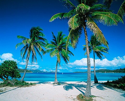 Vessup Bay. Saint Thomas. U.S. Virgin Islands : Stock Photo