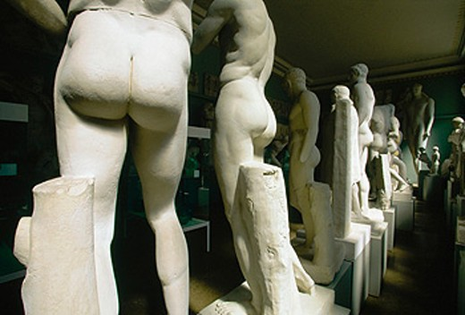 Collection of plaster casts (University Collection of Classical Antiquities). Academic Art Museum. Bonn. Germany : Stock Photo