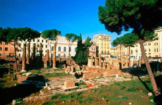 Roman Forum. Lazio. Italy : Stock Photo