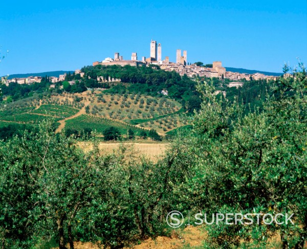 San Gimignano. Italy : Stock Photo