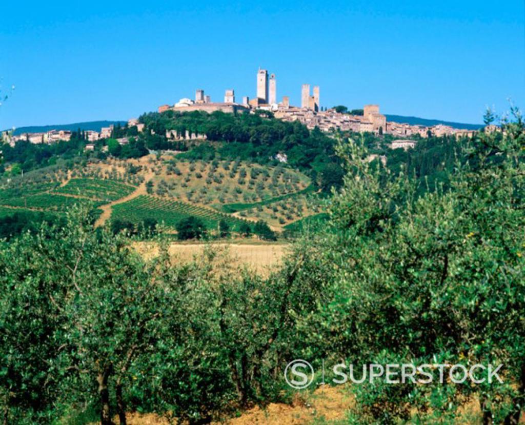 Stock Photo: 1566-051109 San Gimignano. Italy
