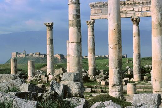 Stock Photo: 1566-051206 Ruins of Roman city. Apamea. Syria