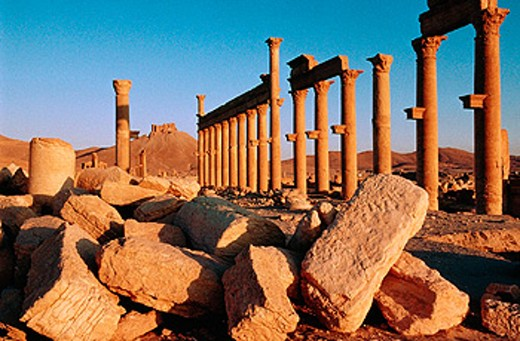 Stock Photo: 1566-051680 Ruins of the old Greco-roman city of Palmira. Syria