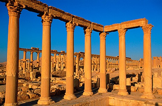 Stock Photo: 1566-051681 Ruins of the old Greco-roman city of Palmira. Syria