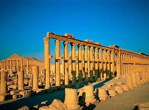 Stock Photo: 1566-051699 Ruins of the ancient city at sunrise. Palmyra. Syria