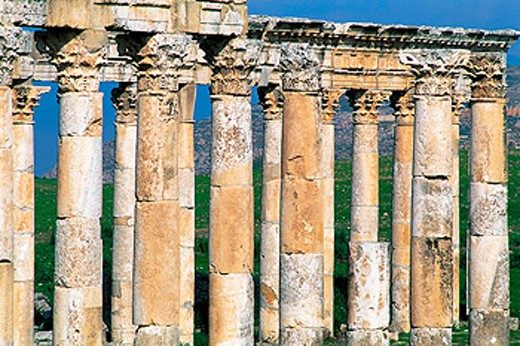 Stock Photo: 1566-051868 Roman city ruins. Apamee. Syria