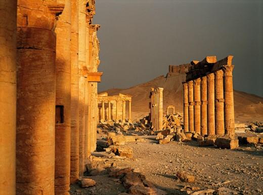 Palmyra ruins. Syria : Stock Photo