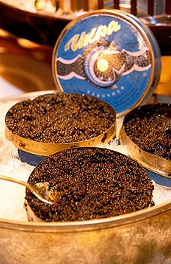 Caviar being served in luxury restaurant. Saint Petersburg. Russia : Stock Photo