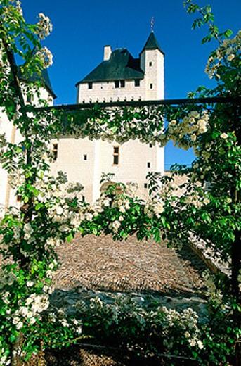 Stock Photo: 1566-053157 Le Rivau castle. Touraine, Val-de-Loire. France