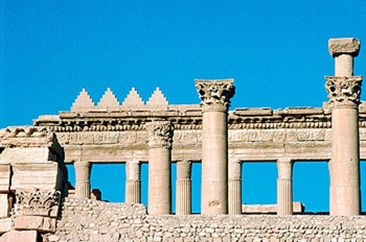 Stock Photo: 1566-053462 Ruins of the old Greco-roman city of Palmira. Syria