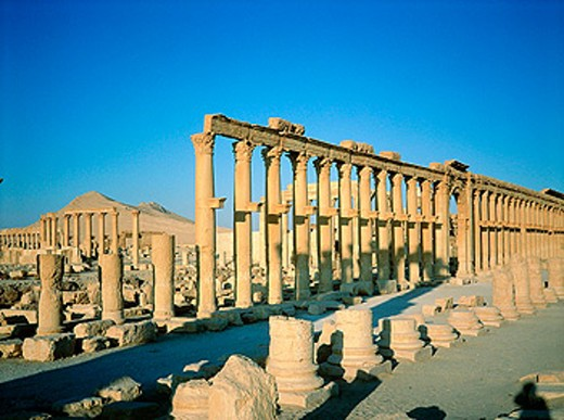 Stock Photo: 1566-053464 Palmyra ruins, remains of the 1200 m. colonnade edging the ´cardo´ (main road in Roman cities). Syria