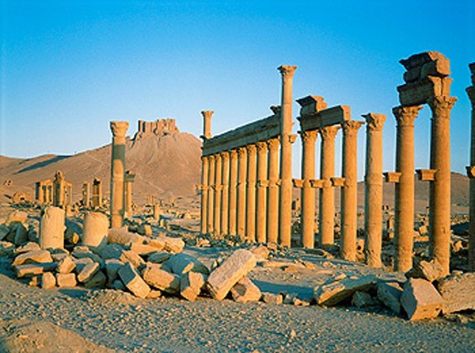 Stock Photo: 1566-053465 Palmyra ruins, remains of the 1200 m. colonnade edging the ´cardo´ (main road in Roman cities). Syria