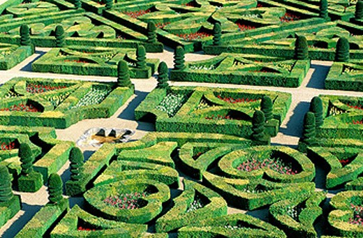 Gardens of Château de Villandry. Touraine. Loire Valley. France : Stock Photo