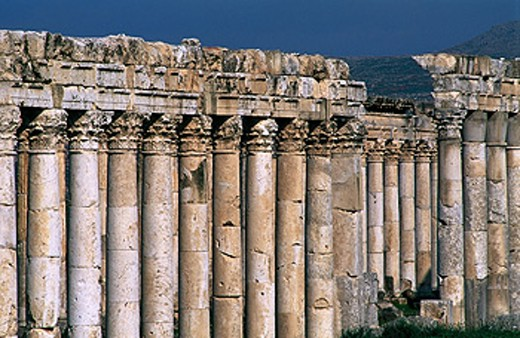Ruins of Roman city. Apamea. Syria : Stock Photo