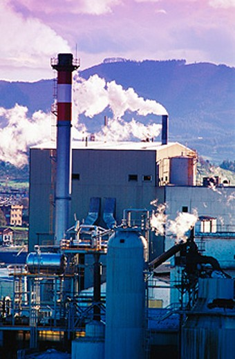 Paper mill. Iurreta. Biscay. Spain : Stock Photo