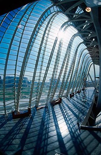 Museo de las Ciencias Príncipe Felipe, City of Arts and Sciences, by S. Calatrava. Valencia. Spain : Stock Photo