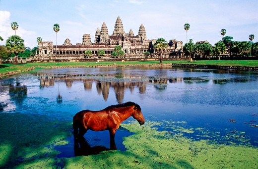 Stock Photo: 1566-065033 Temple complex of Angkor Wat. Angkor. Cambodia