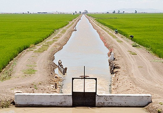 Irrigation channel. Sevilla province. Andalusia. Spain : Stock Photo