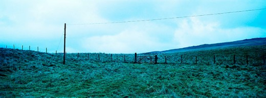 Stock Photo: 1566-066724 Country side with wire fences